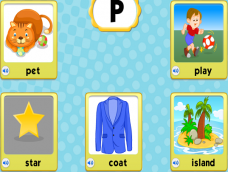 Pet Play Star Coat Island